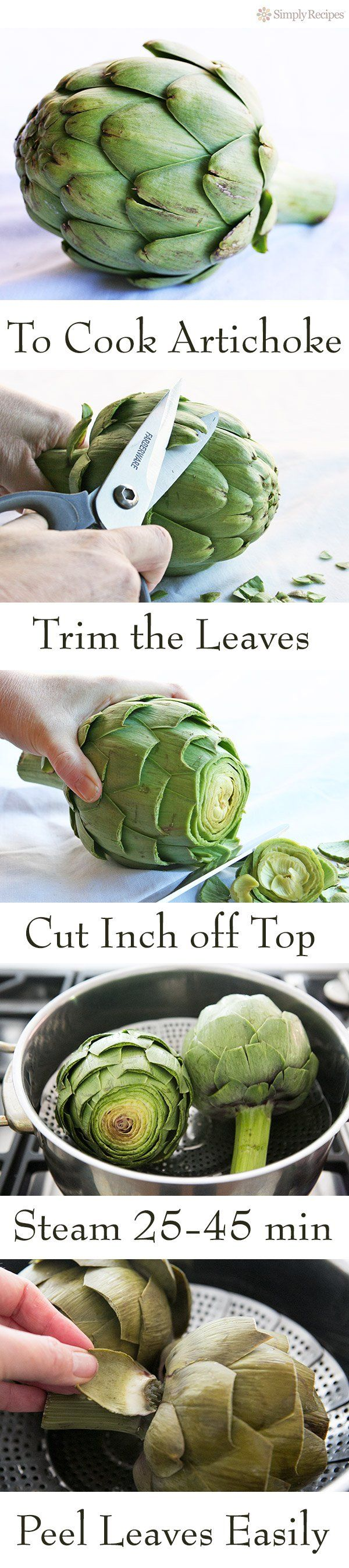 Artichokes are so good for you and so delicious! Here are detailed instructions (with photos) on how to cook them and eat them. Easy! #paleo #vegan On SimplyRecipes.com