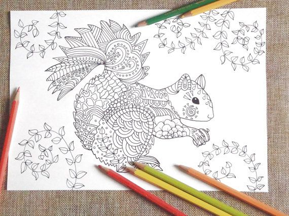 squirrel coloring adults colouring kids totem animal белка download colouring woodland animal fall printable print digital lasoffittadiste