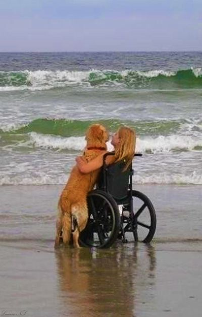 Through the hardest times, animals will be there for you.