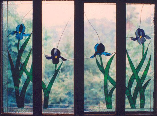 Iris in shutters