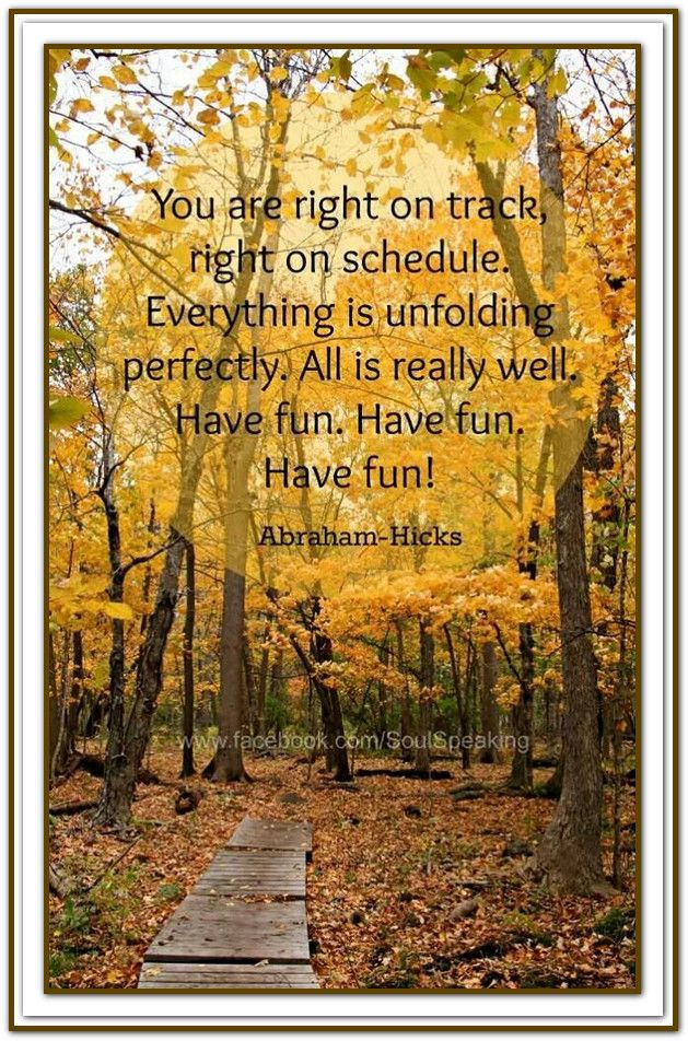 You are right on track, right on schedule... *Abraham-Hicks Quotes (AHQ1019)