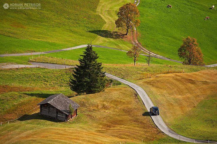 Swiss fields.