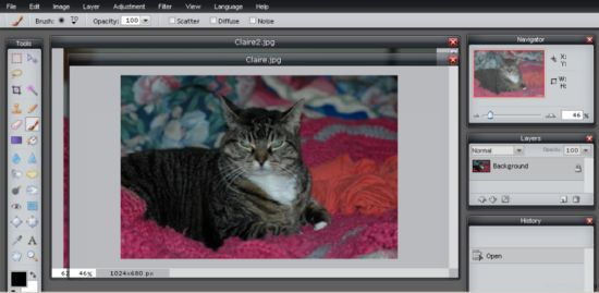 How to Use the Pixlr Online Image Editor: 9 steps (with pictures)