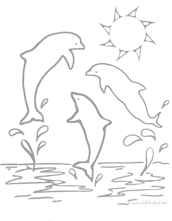 Printable Dolphin Coloring Page