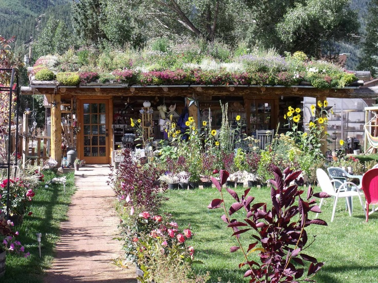 Wonderful A Living Roof On A Small, Eclectic Plant Nursery In Lake City, Colorado  Called The Pottin Shed.