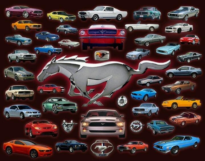 """Mustangs Collage"" Re-Pinned by Florida Ford Mustang Dealership Bozard Ford http://www.bozardford.com/custom/ROUSH-Mustang-Dealer-Florida/Jacksonville-FL-Ford-Superformance-Dealer"