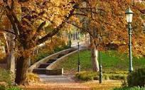 rosalind park bendigo - Google Search