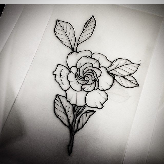 Image result for black and white gardenia tattoos