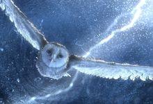 Фантазия синие фильмы совы легенда о хранителях молнии 1280x1024 обои Арт HD обои