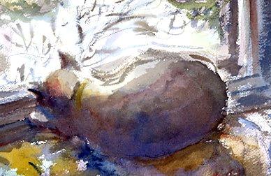 Cat in the studio window, watercolor