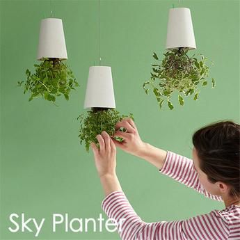 Decorative Small Hanging Upside Down Flower Pots