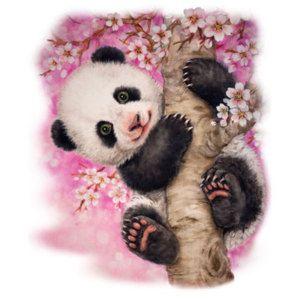 Cherry Blossom Panda Bear Hoodie Sizes/Colors  Para Pintar E Bichinho