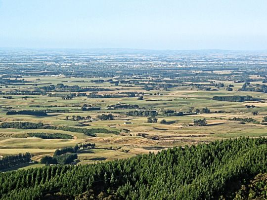5th February 2003. A hazy Manawatu flood-plain late on a sunny summers afternoon. Palmerston North city in the middle ground. Once bush, wetlands and flax, it has been drained, dried and farmed.