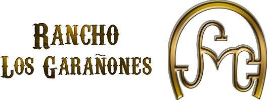 """Cortesía de """"Los Garañones, Caballos Sementales"""", Guadalajara, Jalisco (México)."""