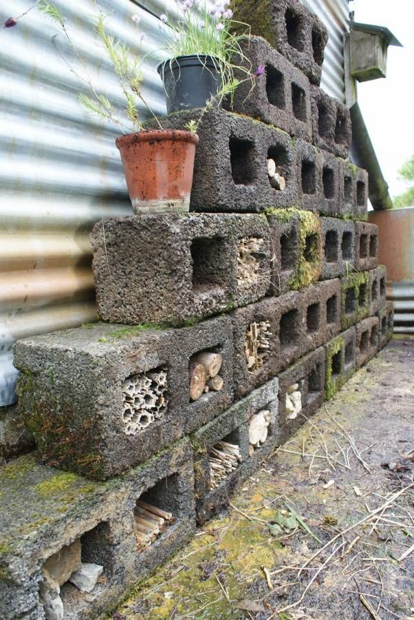 Our insect hotel work in progress - plenty of spaces yet to fill.
