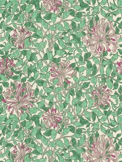 Honeysuckle, a feature wallpaper from Morris and Co, featured in the William Morris collection.