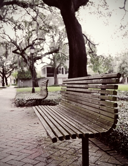 #Savannah Park Bench