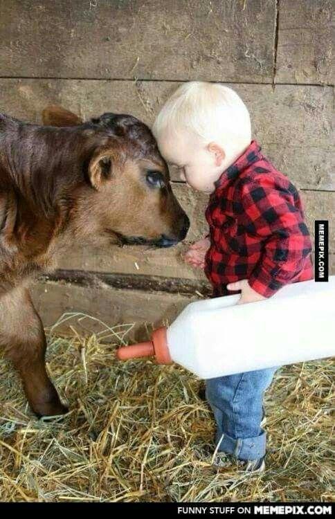 Calf & toddler