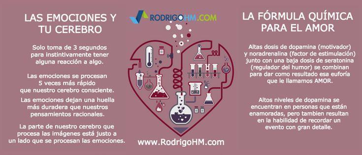 Las emociones y tu cerebro - La fórmula química para el amor. #HappyValentinesDay