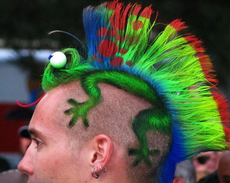 Das ist doch mal ein etwas anderer Iro, als man ihn gewöhnlicherweise bei Punks sehen kann :)
