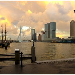 Rotterdam at its best