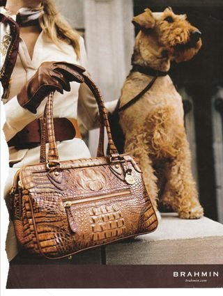 """Brahmin handbag. Cute dog :)"" (pinner says) we all know it is an AIREDALE ♥"