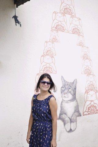 Cat street art in georgetown penang in Malaysia.