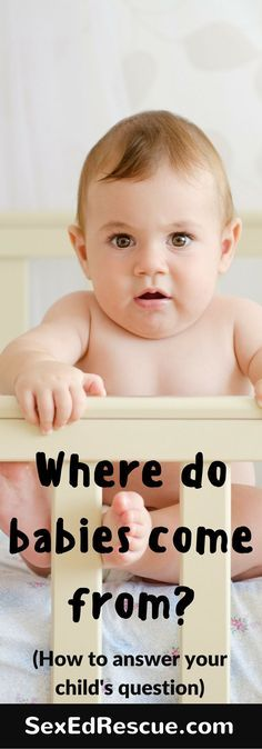 Where do babies come? Answering this question doesn't have to be tricky for parents! Learn how to answer this question without giving too much information away.
