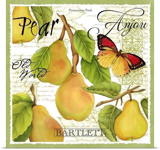 Botanical Pear
