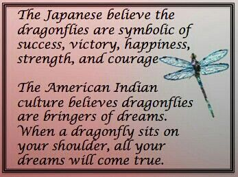 The Story of the Dragonfly. Pinned by Author Audrey Gene.