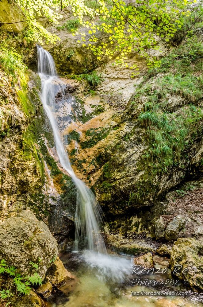 Waterfall in Abruzzo National Park by Renzo Re