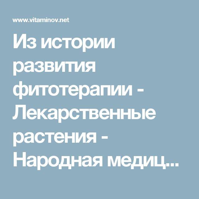 Из истории развития фитотерапии - Лекарственные растения - Народная медицина - Это должен знать каждый - Vitaminov.net