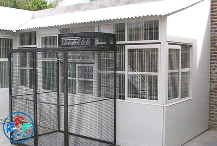 Pigeon Loft Design Ideas And Pigeon Loft Plan Pigeon Loft Loft