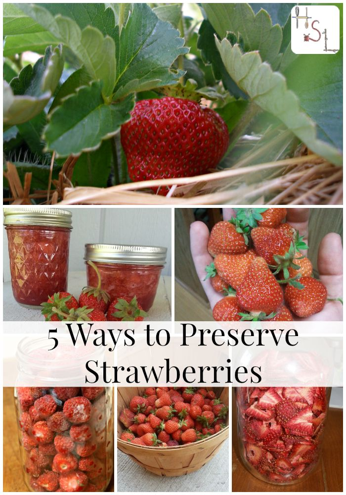 Get the most out of your strawberry harvest with these 5 ways to preserve your berries. ll @homespunseason