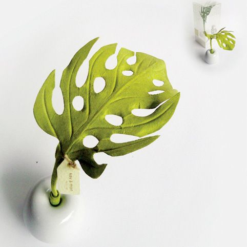 Breathe Fern Diffuser - The leaf naturally draws up the essential oil and diffuses its wonderful scent into your room.
