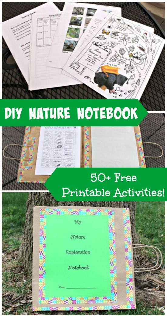 Create a custom nature journal with a paper bag and these AMAZING free printables! {Full tutorial in post!}  Perfect for reading/writing practice!!