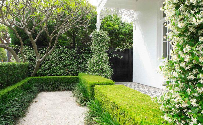 hedging, jasmine, frangipani and black lattice (good manors)