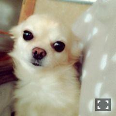 22歳になりました。 | 乃木坂46 衛藤美彩 公式ブログ