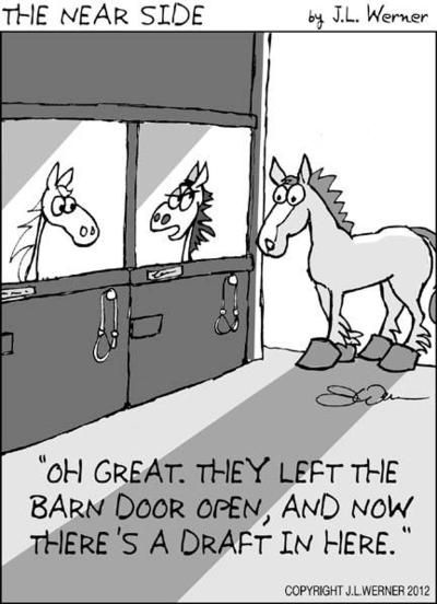 Funny Farm Animals: A little horsing around...