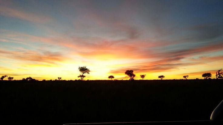 Rainbow Sunrise in the Kalahari
