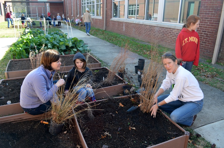 Julia Green Elementary School in Nashville, TN would like to build a community through healthy food & nutritional information while providing a complete educational curriculum to enhance vitality, and sustainability for the future. At present it is just beds - but they've received our ADA compliance and now we'd like to expand it to be an outdoor classroom. #diggingdeeper
