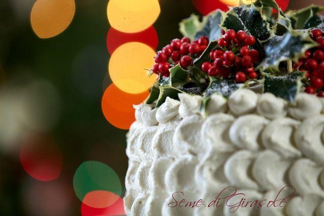 torta natalizia con arance, cioccolato e anacardi (oranges, chocolate, cashew nuts)