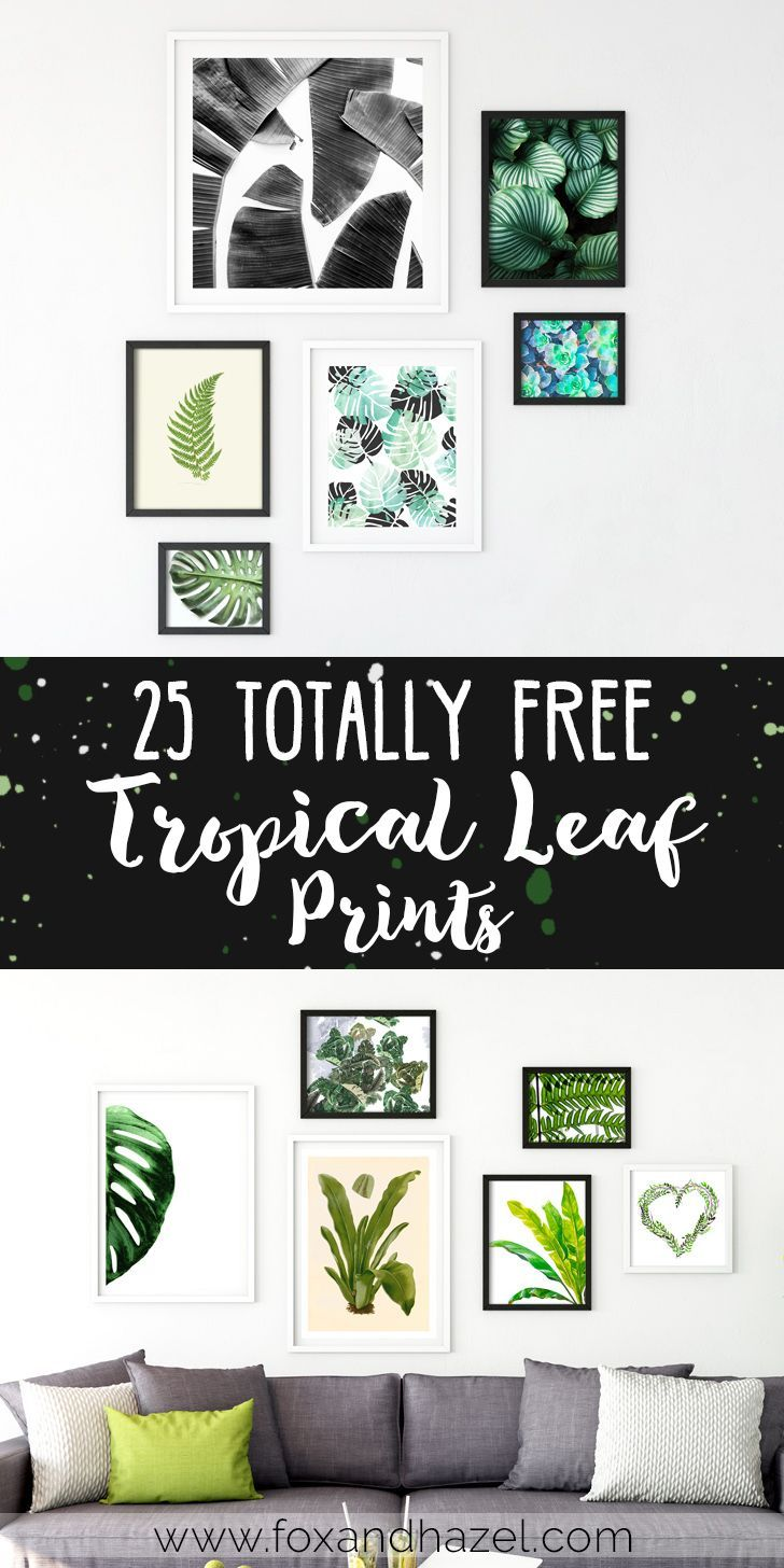 These tropical leaf prints can be a great way to bring the green to your home. I've rounded up some of the best I could find, and hopefully they inspire you to bring some plant vibes to your home!