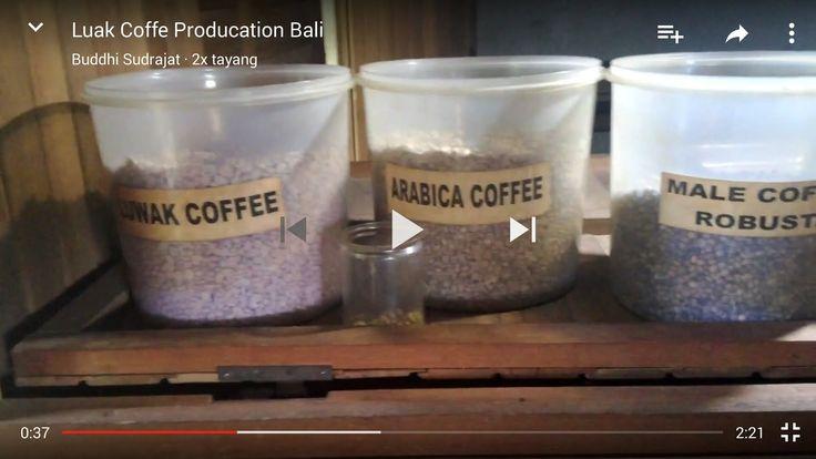 Review Indonesia Cuisine: Luak Coffee Production Bali