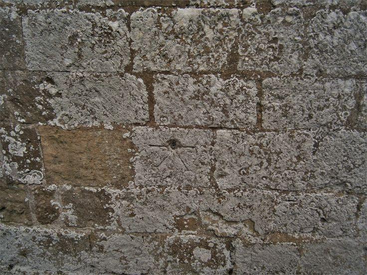 1GL Bolt Rudston, Church. TA 09767 67735