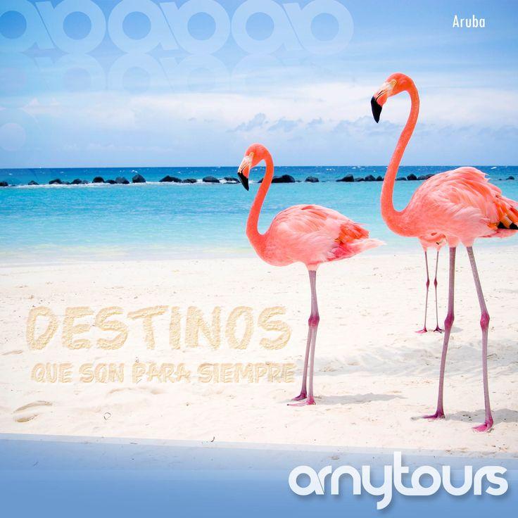 Descubre Aruba la Isla feliz...