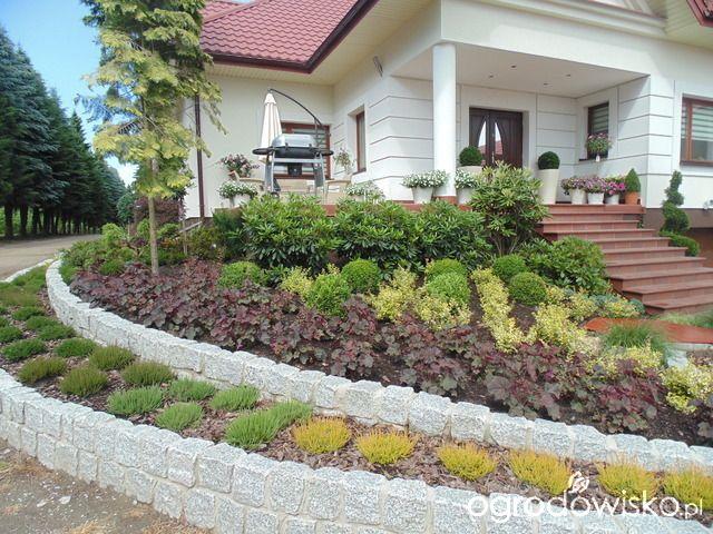 Metamorfozy ogrodowe - strona 66 - Forum ogrodnicze - Ogrodowisko