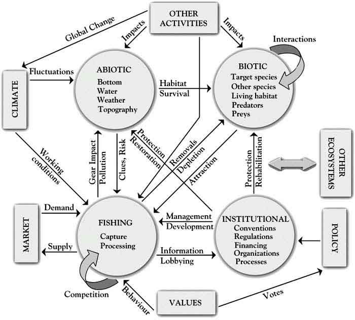 ecosystem components Unit 4 : ecosystems -2- wwwlearnerorg 1 introduction ecology is the scientific study of relationships in the natural world it includes relationships between.