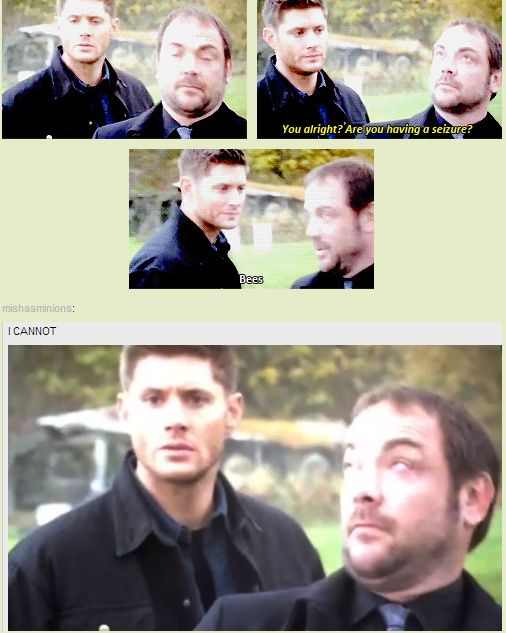 [GIFSET] Season 9 Gag Reel - This is what I look like around bees too. Except I'm running away a bit more.
