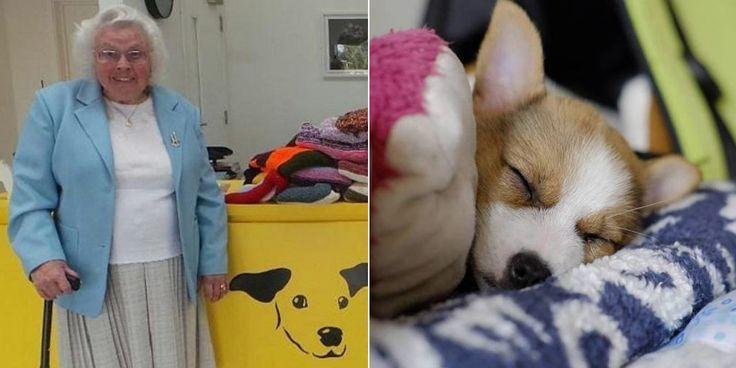 À 89 ans, cette mamie tricote plus de 400 couvertures pour tenir chaud aux chiens de refuge